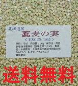 28年 北海道幌加内産 そばの実(抜き実)丸ぬき 1Kg