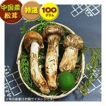 【中国産松茸】:特選松茸:約100g