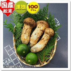 【国産松茸】:進物松茸:約100g(約2〜5本):岡山・兵庫