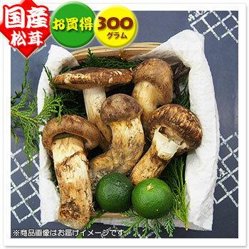 【国産松茸】約300g:岡山/兵庫産