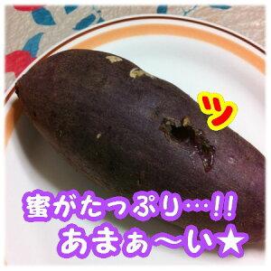 【野菜】さつまいも(甘太くん)5kg(Mサイズ):2800円