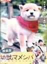 映画版 幼獣マメシバ /佐藤二朗【中古】【邦画】中古DVD
