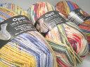 お買い物マラソン協賛40%OFF!Opal(オパール)毛糸40%OFF! Opal 靴下用毛糸 フンデルトヴァ...