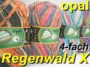Opal 靴下用毛糸 Regenwald_10_4-fach【Opal各種2玉以上お買上げで送料無料】