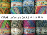 Opal毛糸Little_Secrets6-fach【合太】【Opal各種3玉以上お買上げで送料無料】