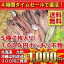 タイムセール4時間限定!1,000円ポッキリ干物セット 5種7枚入り! 【送料無料】