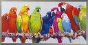 油絵 額装 肉筆絵画 オイル ペイント アート「カラフル パロット」OP-22021-新品