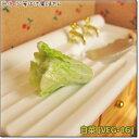 ミニチュアフード 白菜[SMVEG-16][m-s]【ネコポス配送対応】【C】