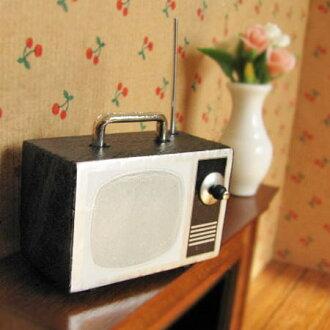 Miniature gadgets mobile TV