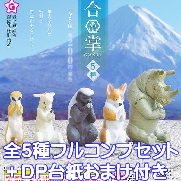 コレクション, フィギュア 5 5DP