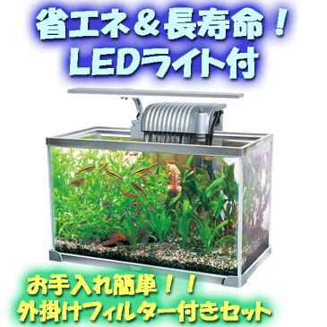 【ポイント5倍!】 テトラ 42cmガラス水槽・LEDライト付きセット AG-42LE[111212p05]