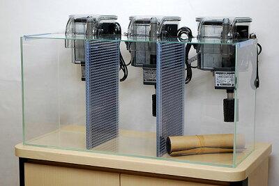 幅60cm・3槽タイプのフレームレスガラス水槽と外掛け式フィルターx3個のセットです。【送料無料...