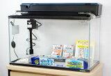 【送料無料】 コトブキ 60cmガラス水槽 観賞魚飼育5点セット・LEDライト仕様 【北海道・沖縄・離島、別途送料】