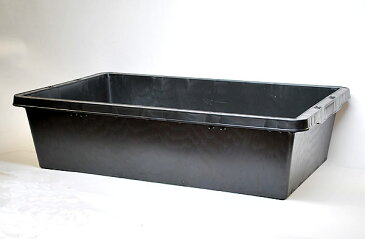 黒舟60 【熱帯魚・アクアリウム/鉢】