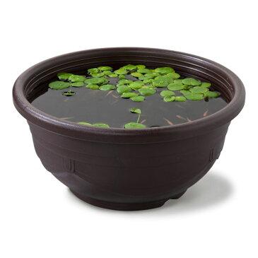 スドー メダカ鉢 黒茶11号 【熱帯魚・アクアリウム/鉢】