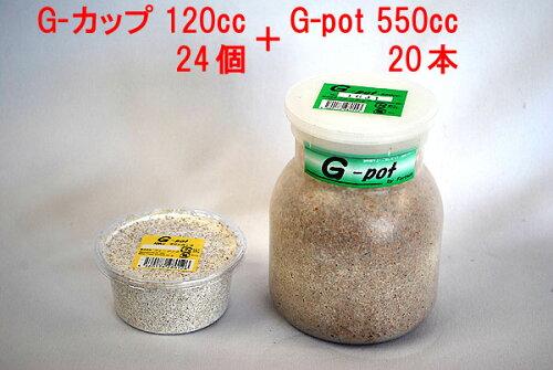 フォーテック G-pot 550ccx20本+G-カップ 120ccx24個