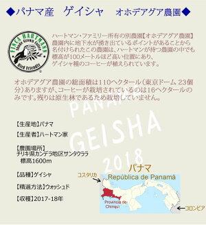 ゲイシャコーヒーパナマ産ゲイシャ種100%〜ハートマンオホデアグア農園〜(珈琲豆/粉)100g