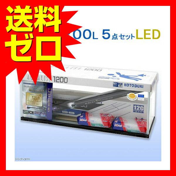 1200L 5点LED  いぬのきもち ねこのきもち おしゃれ かわいい※商品は1点(個)の価格になります。:ウルマックスジャパン