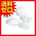 モダン・スタイル カレー皿5枚セット 1700|1805SDTT^