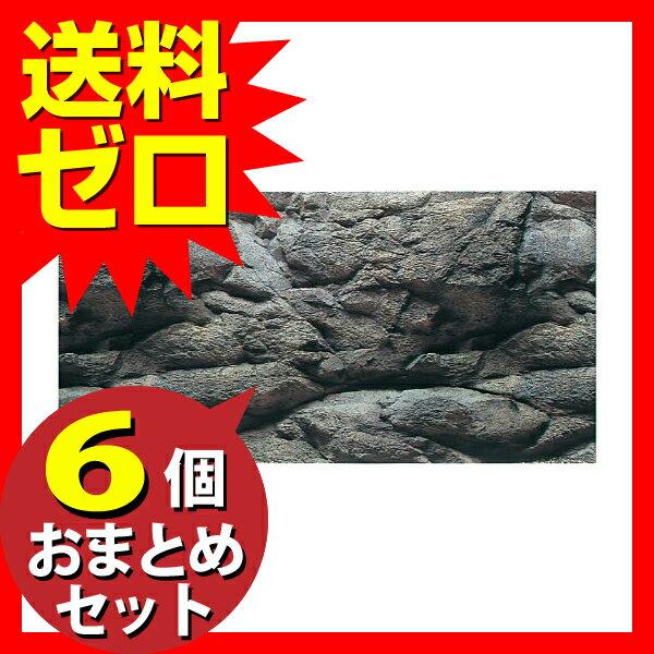 KO3Dスクリーン岩石600 ≪おまとめセット【6個】≫テレビで紹介 雑誌掲載 おしゃれ かわいい いぬのきもち ねこのきもち