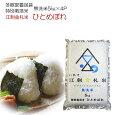 2019年度産特別栽培米江刺金札米無洗米ひとめぼれ5kg×4袋