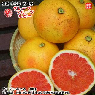 ピンクグレープフルーツとホワイトグレープフルーツの違いは?