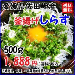 愛媛 佐田岬産 【 釜揚げしらす 】 500g 宇和海の幸問屋 送料無料