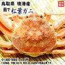 鳥取県 境港産 【 松葉ガニ(ズワイガニ) 】(小 400-...