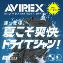 ポイント10倍!Tシャツ メンズ / AVIREX アビレックス 6103500 デイリーウェア S