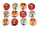 ミッキー 2018 ディズニー・クリスマス 35年間のクリスマスイベントのグッズ 缶バッジセット おみやげ 東京ディズニーリゾート