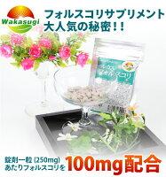 コレウスフォルスコリ60粒1粒に100mg配合コレウスフォルスコリ
