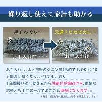 マグネシウムの力マグネシウム粒5mm1キロ純度99.95%以上業務用pH試験紙付き除菌消臭に無限の可能性マグネシウム粒の挑戦お財布にも優しくコスパ最強
