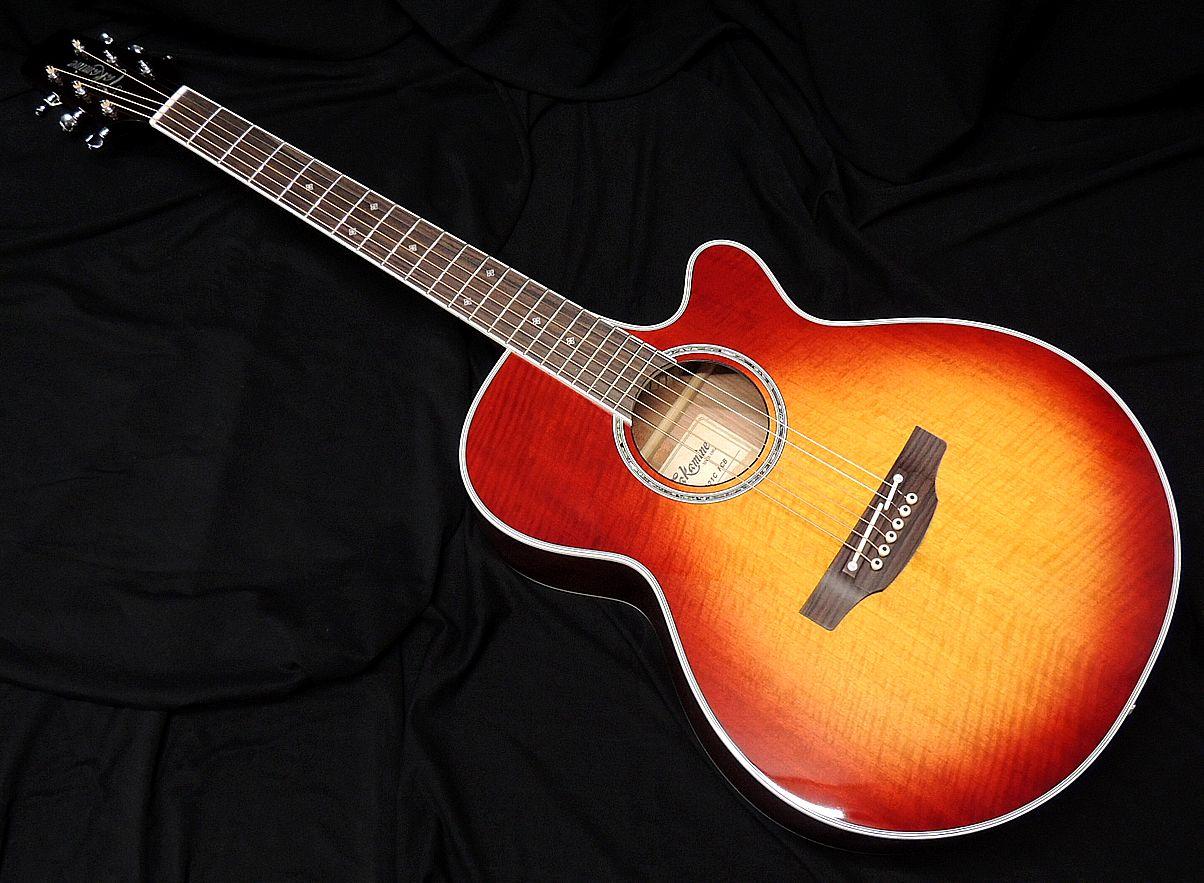 ギター, エレアコギター Takamine PTU121C FCB