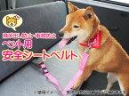 ペット用 シートベルト 運転中の事故防止・飛び出し防止に! 黒