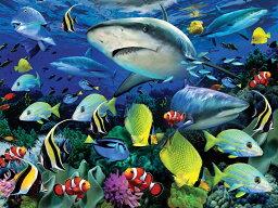 3D ジグソーパズル 【サメの海】500ピース HowardRobinson3D サメ 海 おうち時間 かっこいい プレゼント 脳トレ 知育玩具