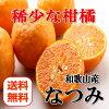 【送料無料】【訳あり】希少な柑橘です!高糖度の≪なつみ≫2kg