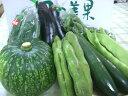 【送料無料】紀州から旬の野菜を詰め合わせました