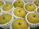 【送料無料】【お試し用】和歌山のジューシーで美味しい梨≪豊水梨≫(8玉)