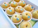 送料無料】ジューシーで美味しい梨≪豊水梨≫9〜13玉入り(約3.7〜4kg)【和歌山産・徳島産・三重産】