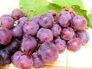 【送料無料】【訳あり】和歌山産幻の葡萄≪ブラックオリンピア≫約1.4kg