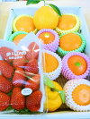 【送料無料】和歌山産★春の柑橘7種セット★うれしい福袋