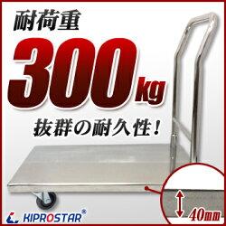 固定ハンドル式ステンレス台車(組立式)