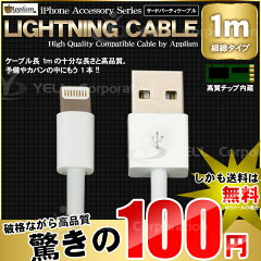 iPhone5 ケーブル 1.0m【レビュー投稿必須】【送料無料】充電器 充電 Lightning USBケーブル ライトニングケーブル【配送種別:C】【宅配便不可】【お一人1個限定】
