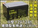 LONG 【標準タイプ 期待寿命3〜5年】12V12Ah シールドバッテリー(完全密閉型鉛蓄電池) WP12-12 UPS(無停電電源装置)・電動リール・12V電源用に 汎用標準タイプ