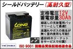 【標準タイプ+サイクル強化】12V30Ah高性能シールドバッテリー(WP30-12TNE)