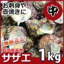 長崎産天然サザエ 中サイズ 1kg