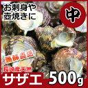 長崎産天然サザエ 中サイズ 500g