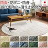 【送料無料】ラグ カーペット 手触りやわらか 極細繊維 日本製 円形 約200×200cm Mリュストル (S) 【あす楽対応】