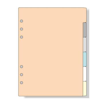 ダ・ヴィンチ DAVINCI リフィル A5サイズ用 カラーインデックス(6区分) W155×H210mm 6枚 DAR506