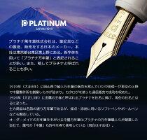 プラチナPLATINUMバランスFP万年筆ブラックFサイズPLA-PGB-3000-1-F